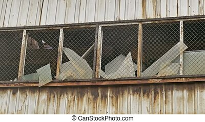 broken window glass abandoned warehouse factory - broken...