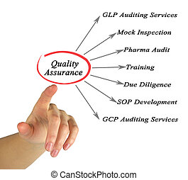 Diagram of Quality Assurance