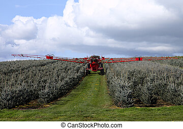 Spraying insecticide. - A farmer is spraying insecticide...