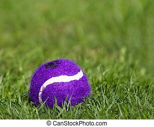 Ball on green grass
