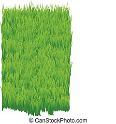 Green_grass - The green grass background Grass field texture...