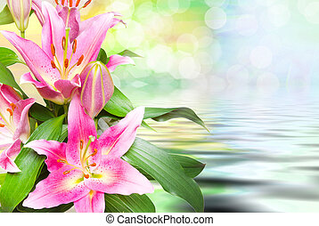 Close up of pink lilies