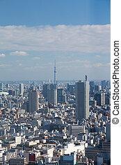 Aerial view Tokyo big city