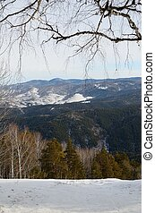 Altai Foothills - Panorama of the Altai foothills from the...