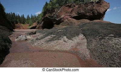 New Brunswick Fundy Coastline Rocks Low Tide - Vertical pan...