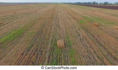 AERIAL VIEW Bales Of Straw Lying On Mown Field - AERIAL VIEW...