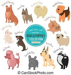 Vector dogs and puppies depicting different fur color and breeds
