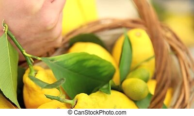 hand picks a lemon and put it in the basket wicker