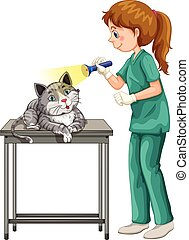 Vet checking up cats ear