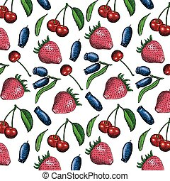 berries set - berries hand drawing set of vector sketches