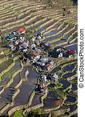 World heritage Rice terraces in Batad, northern Luzon,...