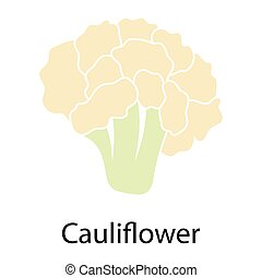 Cauliflower icon on white background Vector illustration