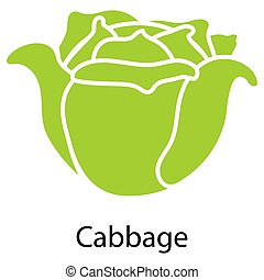 Cabbage icon on white background Vector illustration