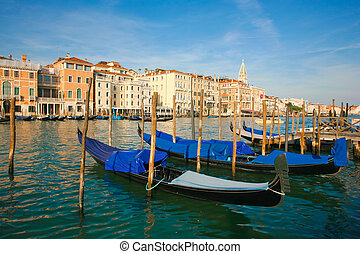 gondolas - Group of gondolas docked on the water in Venice,...