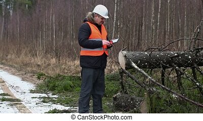 Forest inspector using tablet PC in destroyed forest at...
