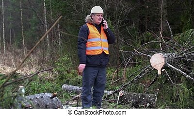 Forest inspector talking on smartphone in destroyed forest...