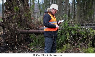 Forest inspector using tablet PC in destroyed forest