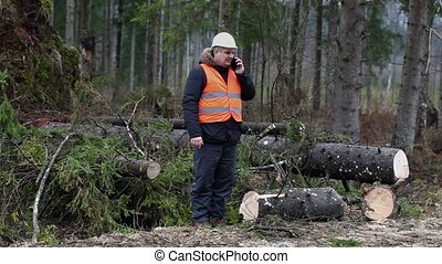 Forest inspector talking on smartphone near tree in forest