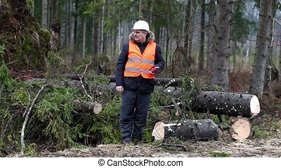 Distracted Forest inspector in destroyed forest
