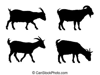 Goats - Vector illustration of goats silhouettes over white...