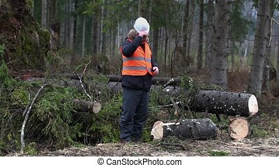 Forest inspector in destroyed forest