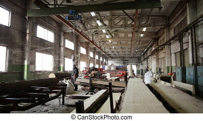 conveyor logs wood factory saw