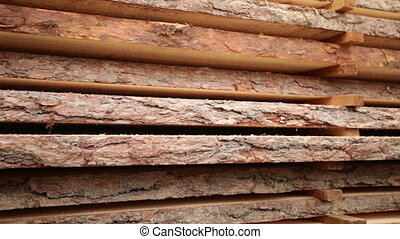 oak tree bark texture wood