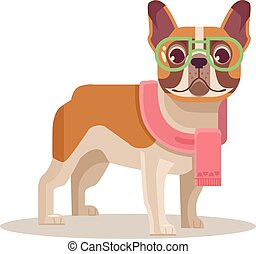 French bulldog. Vector flat cartoon