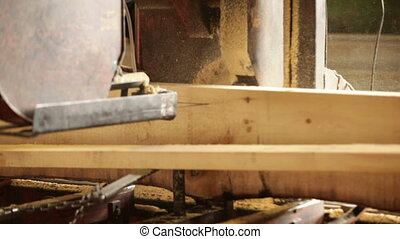 sawmill production boards wooden plant