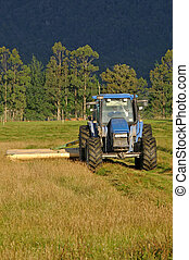 mowing pasture - Tractor mowing pasture for silage, West...