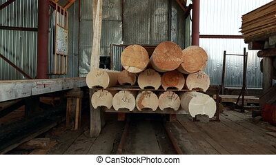 View on platform with logs moves for unload - Woodworking....