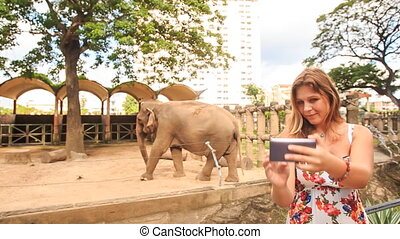 Blond Girl Makes Selfie against Elephant in Zoo Open Air...