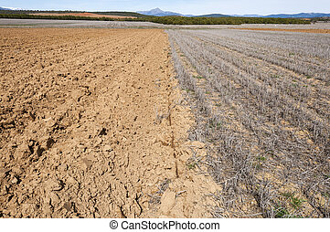 Ploughed fields - Ploughed and stubble fields in an...