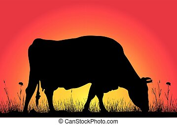 grazing cow silhouettes - cow on the background of the...