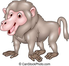 Cartoon funny baboon isolated - Vector illustration of...