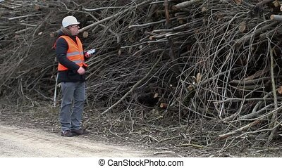 Forest inspector using tablet PC near to to pile sawed bush