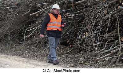 Forest inspector filmed with tablet PC near to pile sawed...