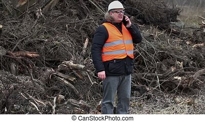 Forest inspector talking on smartphone near to pile sawed...