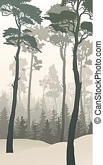 Winter forest with tall pines. - Vertical illustration of...