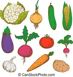 Color ripe vegetables sketches set - Bright young spring...