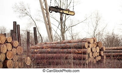 crane to lift logs