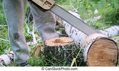 Man cuts away fresh birch in the forest, using electric...