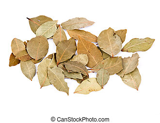 Bay leaves separated on white background