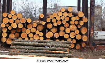 stack of logs on the open stock video
