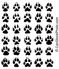 print of dogs paws
