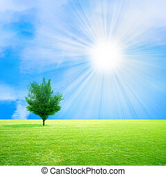 solar sky - glow solar sky on beautiful meadow