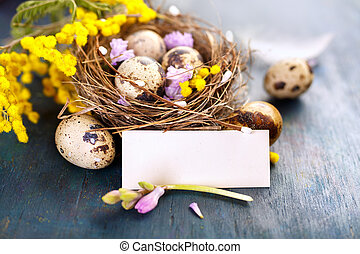 Easter eggs in the nest  and blank card