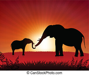 mother elephant with baby on sunset background