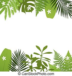 Tropical leaves background with palm,fern,monstera,acacia...