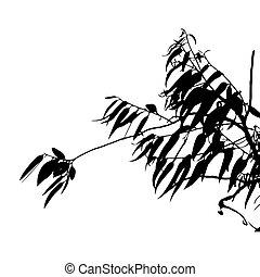 Eucalyptus tree silhouette